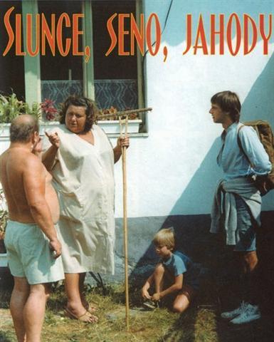 солнце, сено, чешские фильмы